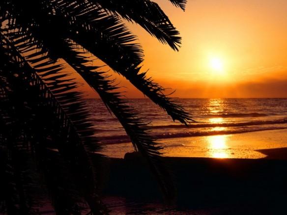 A romantic sunset on the beach.