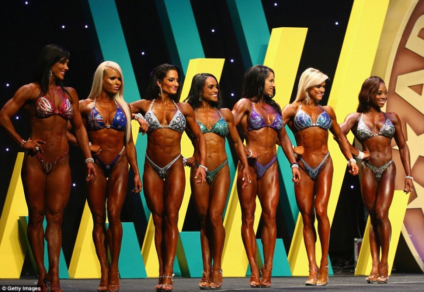 A lineup of gorgeous ladies at the 2015 Arnold Classic Australia.